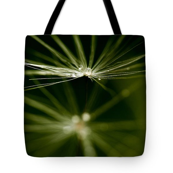 Dandelion Flower With Water Drops  Tote Bag