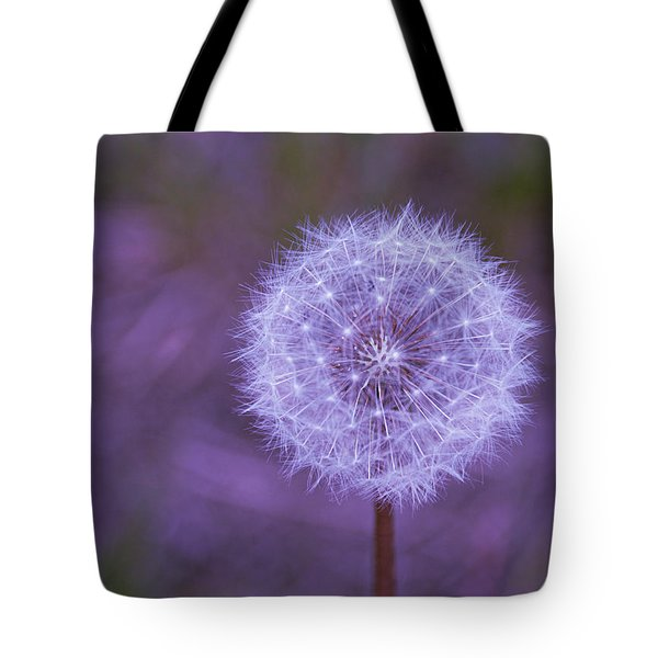 Tote Bag featuring the photograph Dandelion Geometry by SimplyCMB