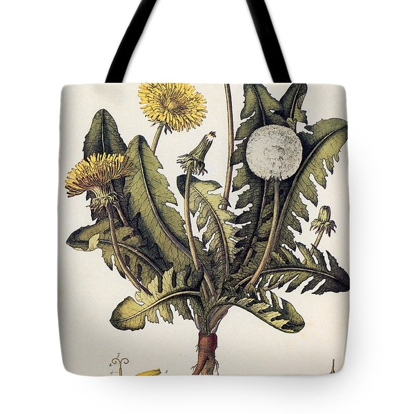Dandelion Tote Bag by Granger