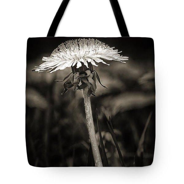 Dandelion In Black And Wite Tote Bag