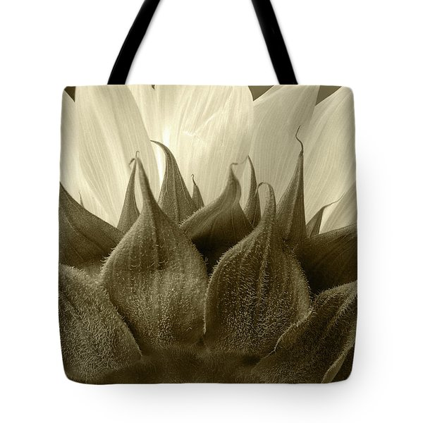 Tote Bag featuring the photograph Dandelion In Sepia by Micah May