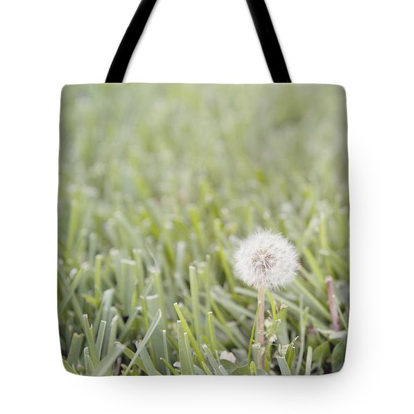 Tote Bag featuring the photograph Dandelion In The Grass by Cindy Garber Iverson