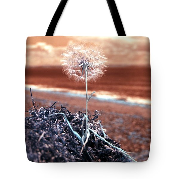 Dandelion Moments Tote Bag by Rebecca Parker
