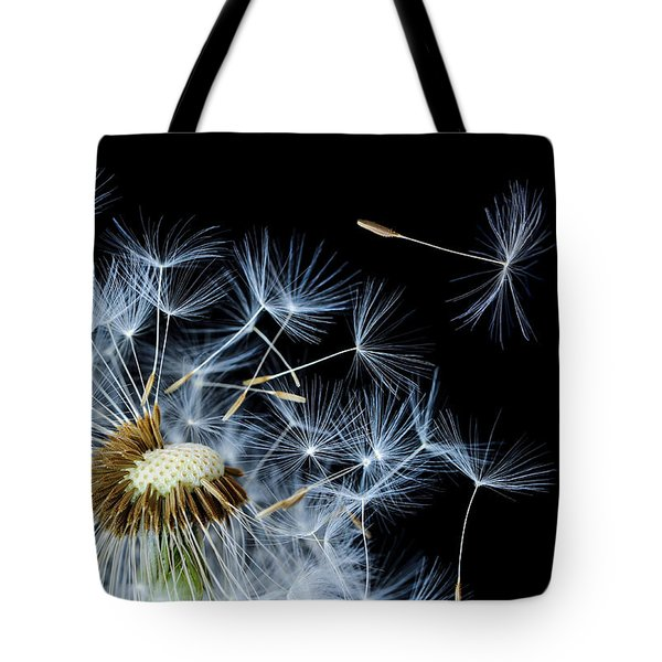 Tote Bag featuring the photograph Dandelion On Black Background by Bess Hamiti