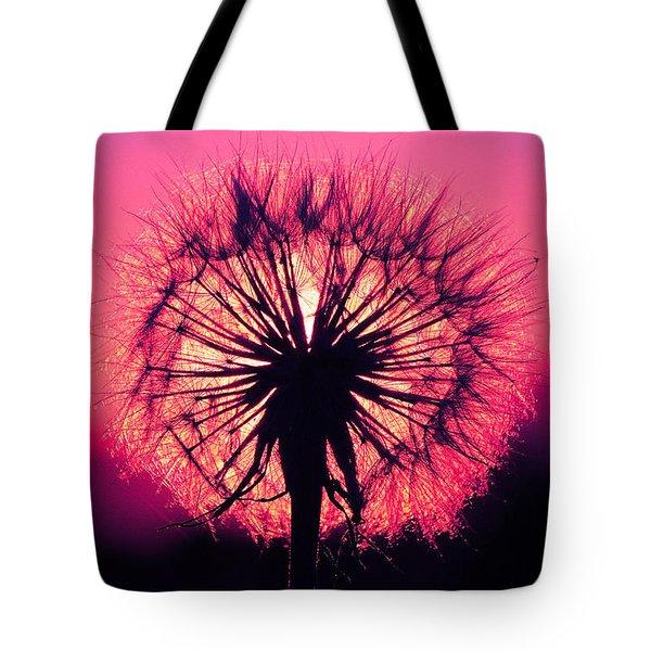Dandelion Tote Bag by Paul Marto