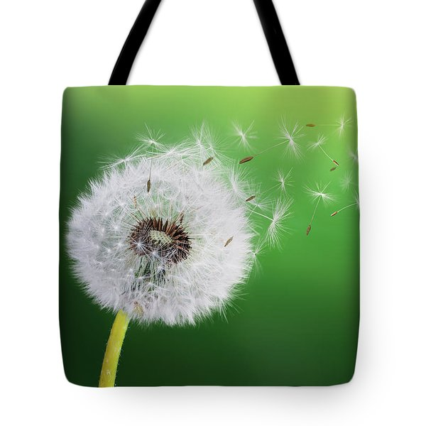 Tote Bag featuring the photograph Dandelion Seed by Bess Hamiti