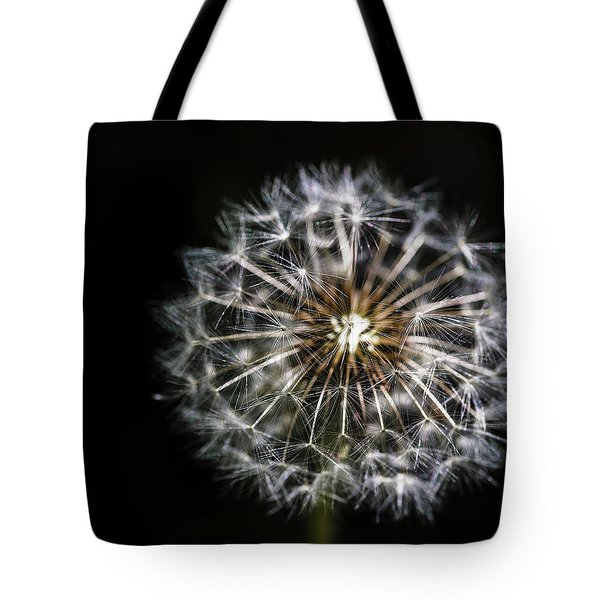 Tote Bag featuring the photograph Dandelion Seed by Darcy Michaelchuk