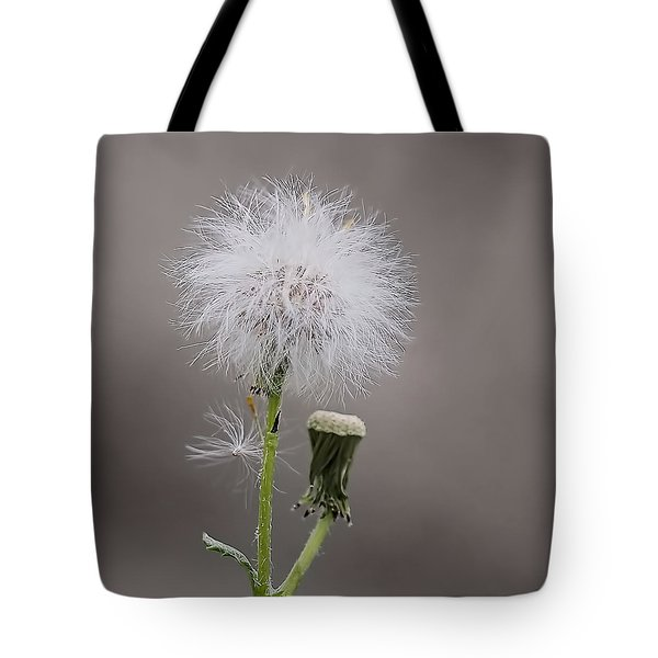 Tote Bag featuring the photograph Dandelion Seed Head by Rona Black