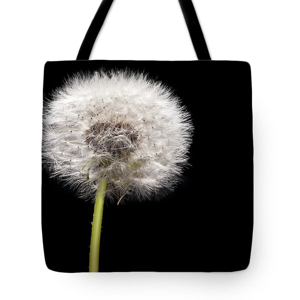 Dandelion Seedhead Tote Bag by Steve Gadomski