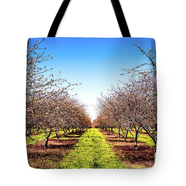 Tote Bag featuring the photograph Dandelion Stripes by Onyonet  Photo Studios