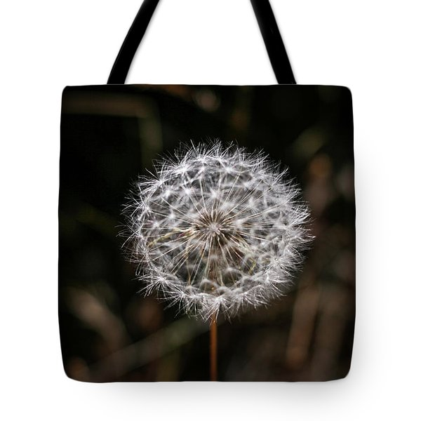 Tote Bag featuring the photograph Dandelion by T A Davies