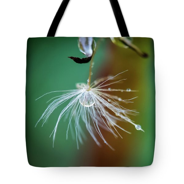 Dandelion Water Drop Macro 2 Tote Bag