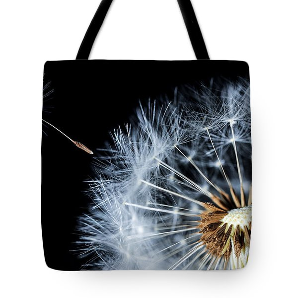 Tote Bag featuring the pyrography Dandy by Bess Hamiti