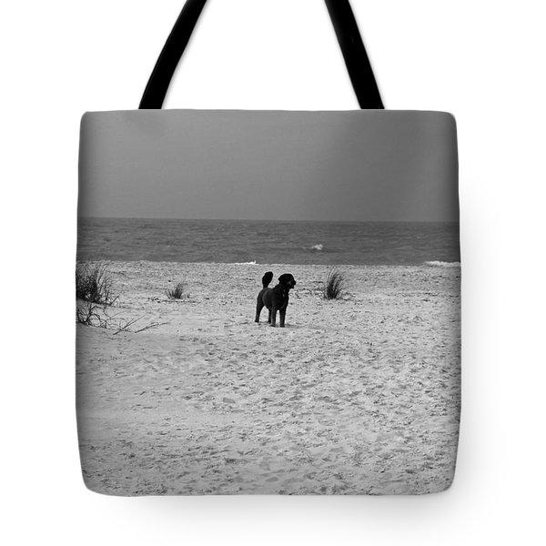 Dandy On The Beach Tote Bag