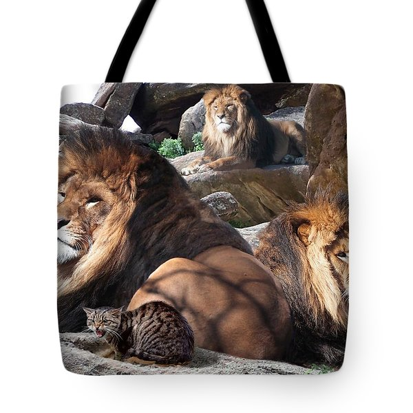 Daniel In The Lion Tote Bag by Bill Stephens