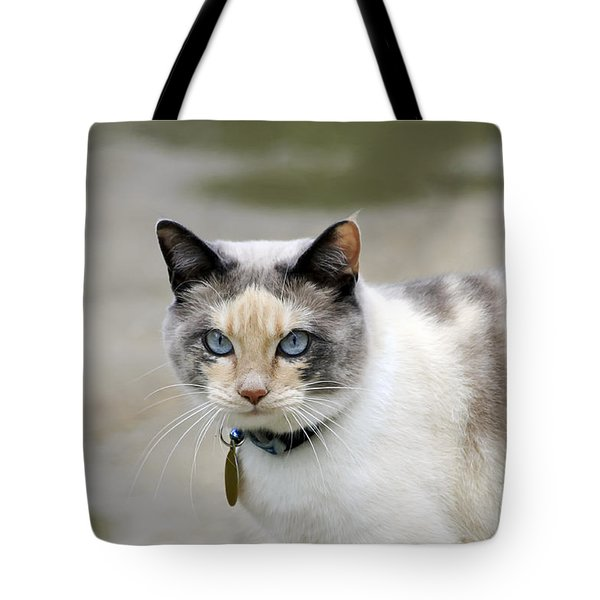 Danni Girl Tote Bag by Teresa Zieba