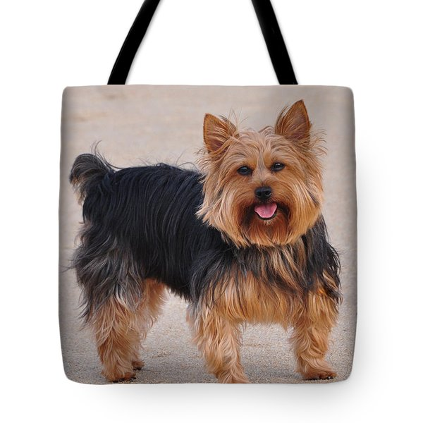 Dapper Dog Tote Bag