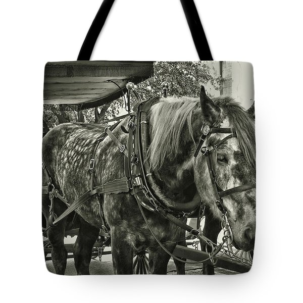 Dapple Grey Tote Bag by JAMART Photography