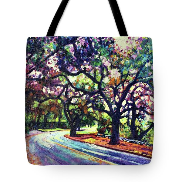 Dappled Lane Through The Arroyo Tote Bag
