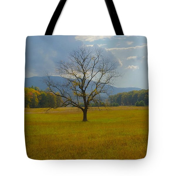 Dare To Stand Alone Tote Bag by Michael Peychich