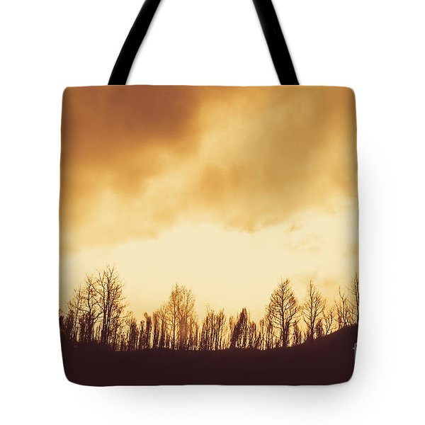Tote Bag featuring the photograph Dark Afternoon Woodland by Jorgo Photography - Wall Art Gallery