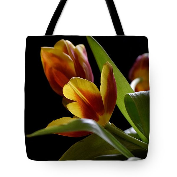 Tote Bag featuring the photograph Dark And Lovely by Deborah  Crew-Johnson