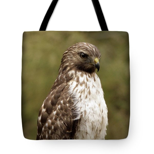 Dark Beauty Tote Bag by Phill Doherty