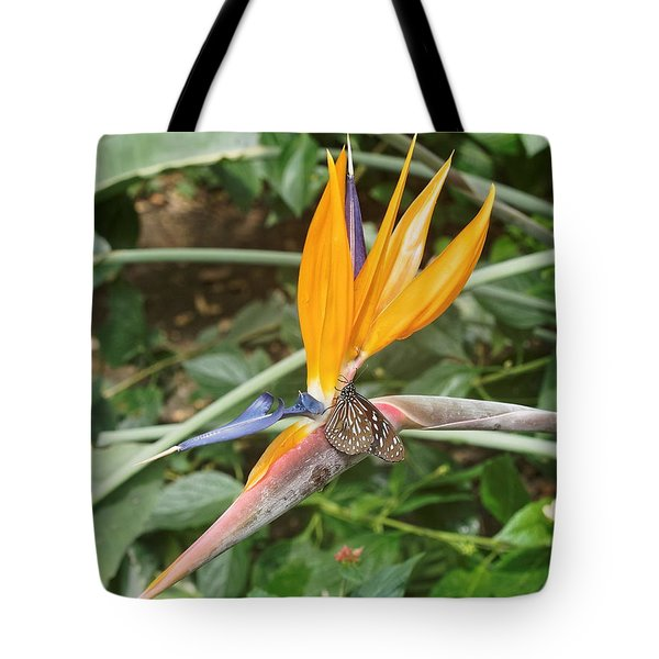 Tote Bag featuring the photograph Dark Blue Tiger Butterfly - 2 by Paul Gulliver