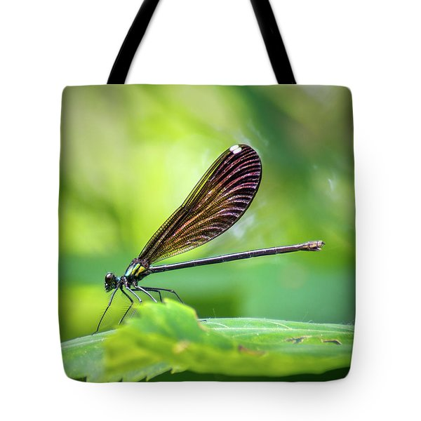 Tote Bag featuring the photograph Dark Damsel by Bill Pevlor