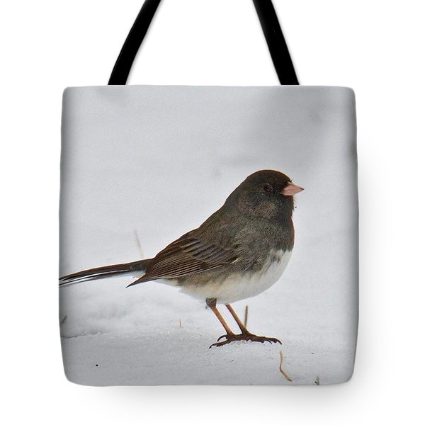 Tote Bag featuring the photograph Dark-eyed Junco 1217 by Michael Peychich