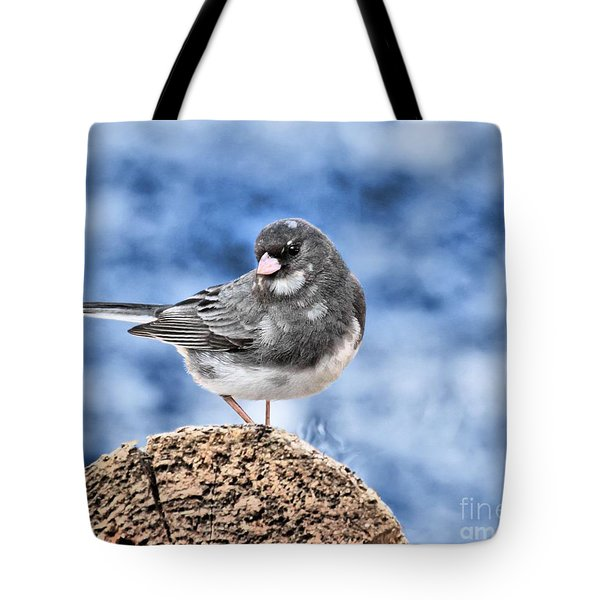 Tote Bag featuring the photograph Dark-eyed Junco by Debbie Stahre