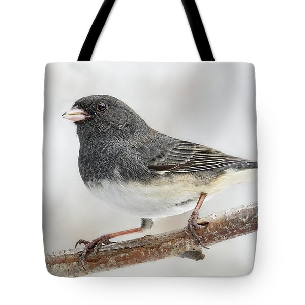 Dark-eyed Junco In Minnesota Tote Bag