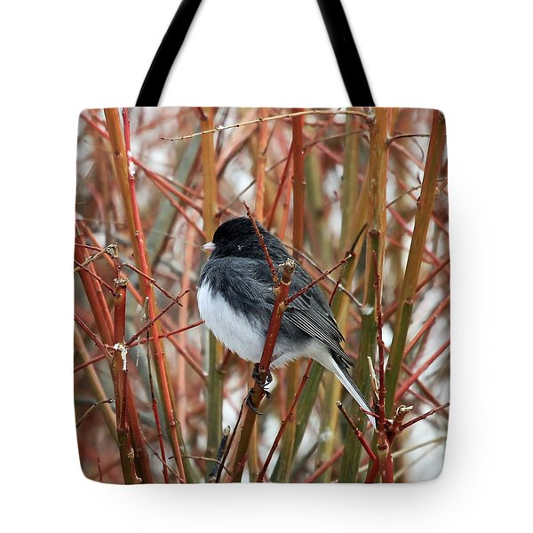 Tote Bag featuring the photograph Dark Eyed Junco by Jackson Pearson