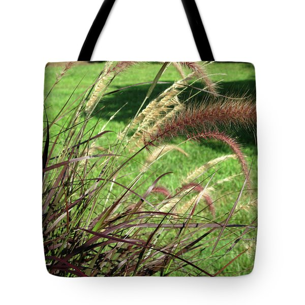 Dark Feather Grass Tote Bag by Michele Wilson