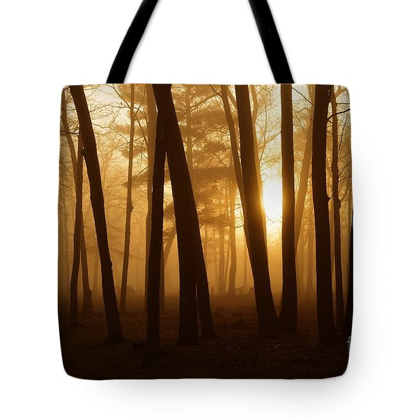 Dark Forest Tote Bag by Terri Gostola