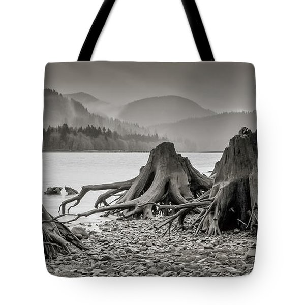 Dark Lake Tote Bag by Marius Sipa