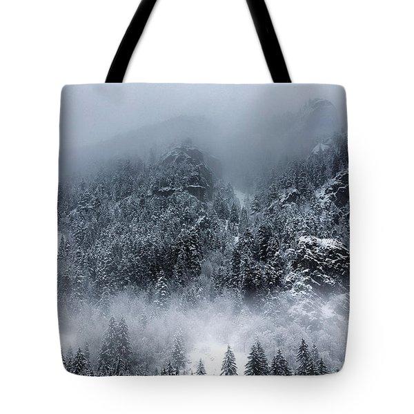 Dark Mountain Tote Bag by Evgeni Dinev