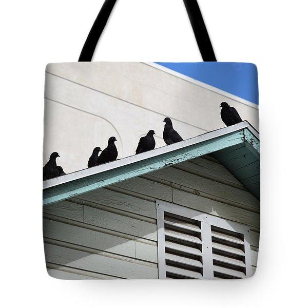 Dark Pigeons Tote Bag