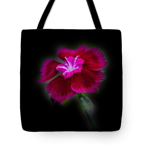 Dark Pink Dianthus Tote Bag by Donna Brown