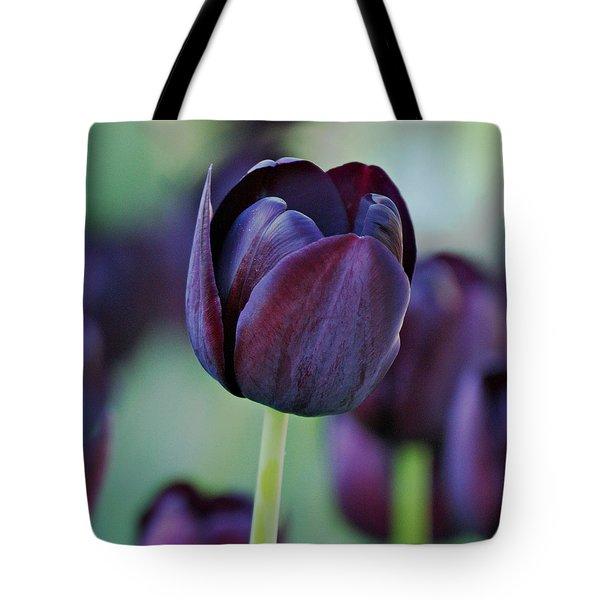 Dark Purple Tulip Tote Bag by Sandy Keeton