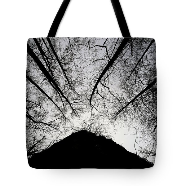 Tote Bag featuring the photograph Dark Shadows by Bob Cournoyer