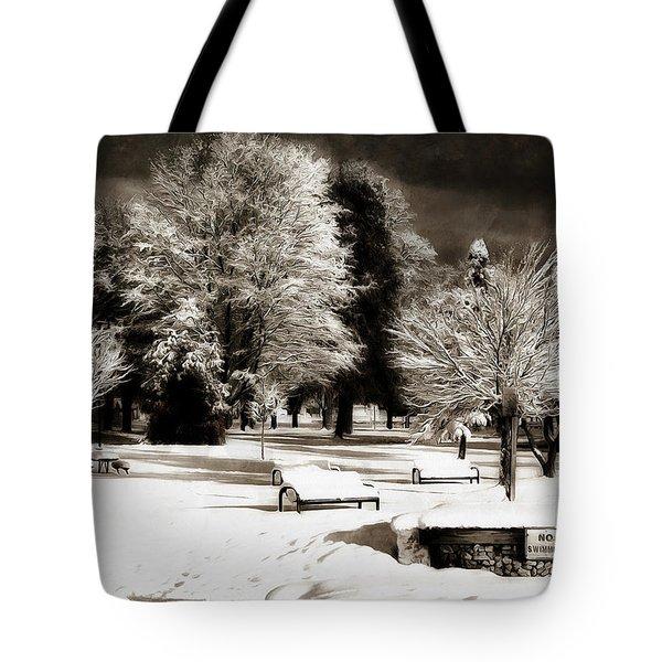 Dark Skies And Winter Park Tote Bag
