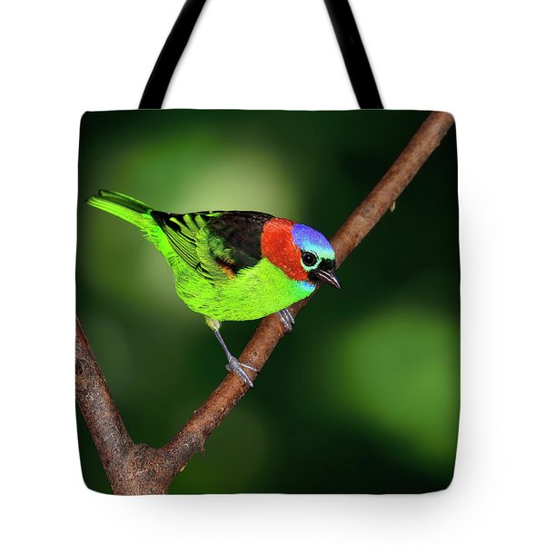 Dark To Light Tote Bag by Tony Beck