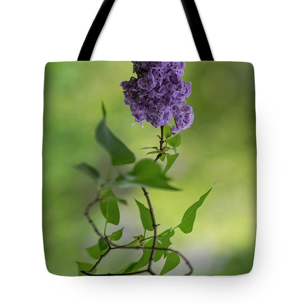 Tote Bag featuring the photograph Dark Violet Lilac by Jaroslaw Blaminsky