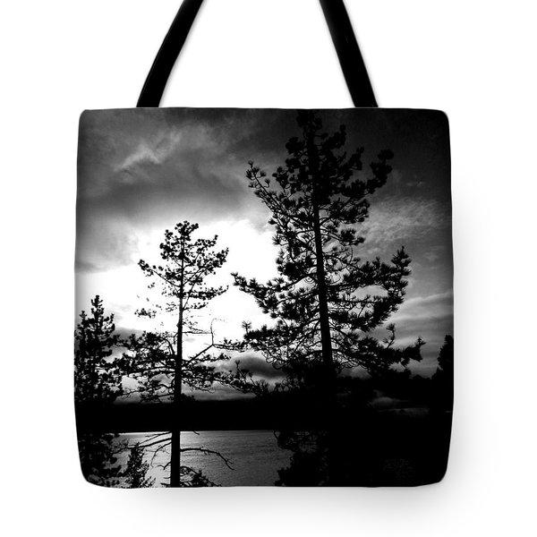 Darkness Crawls Tote Bag