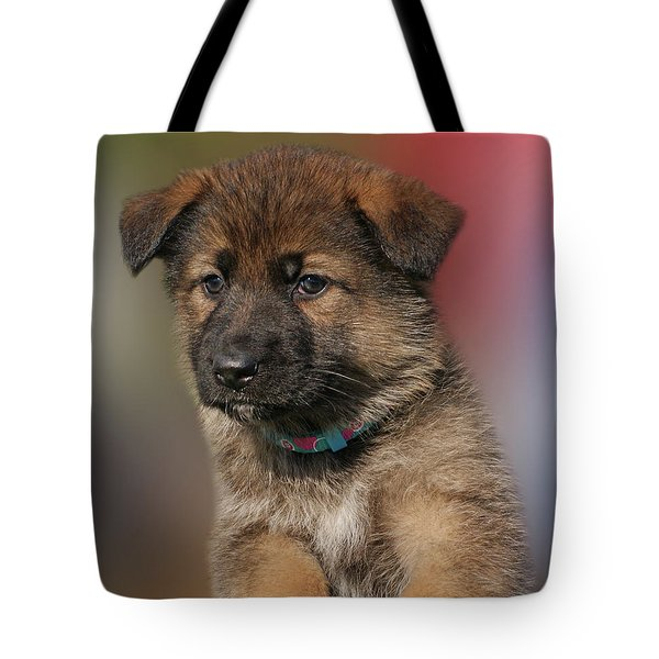 Tote Bag featuring the photograph Darling Puppy by Sandy Keeton