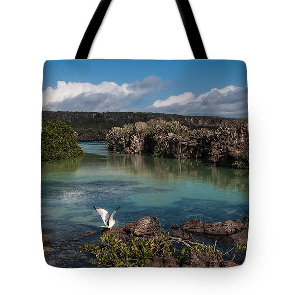 Darwin Bay     Genovesa Island      Galapagos Islands Tote Bag