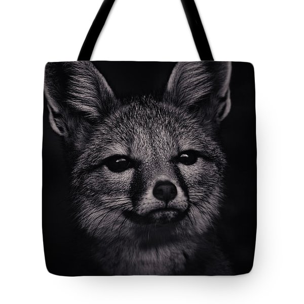 Dash  Tote Bag by Brian Cross