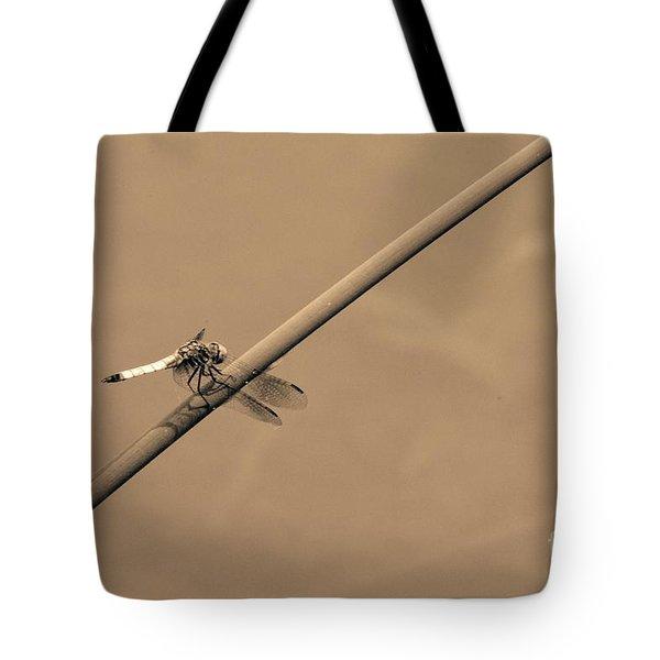 Dashing Dasher Tote Bag by Tim Good