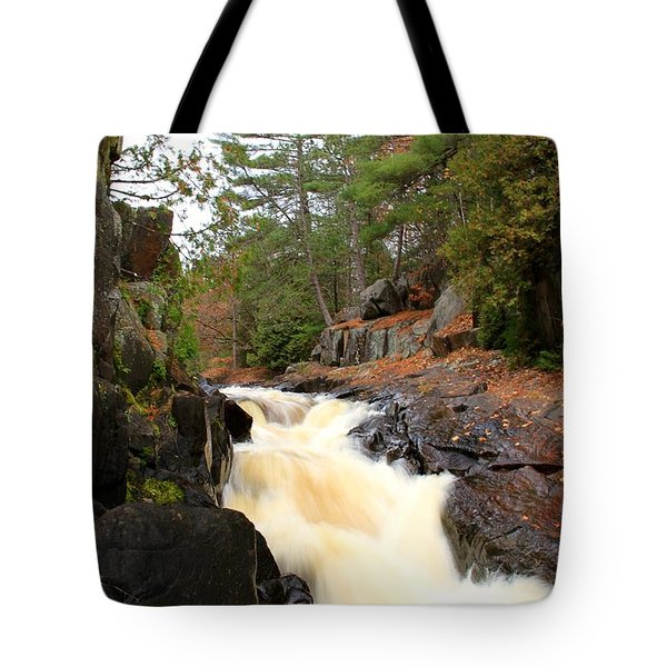 Dave's Falls #7277 Tote Bag by Mark J Seefeldt